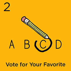 Step 2: Vote for Your Favorite
