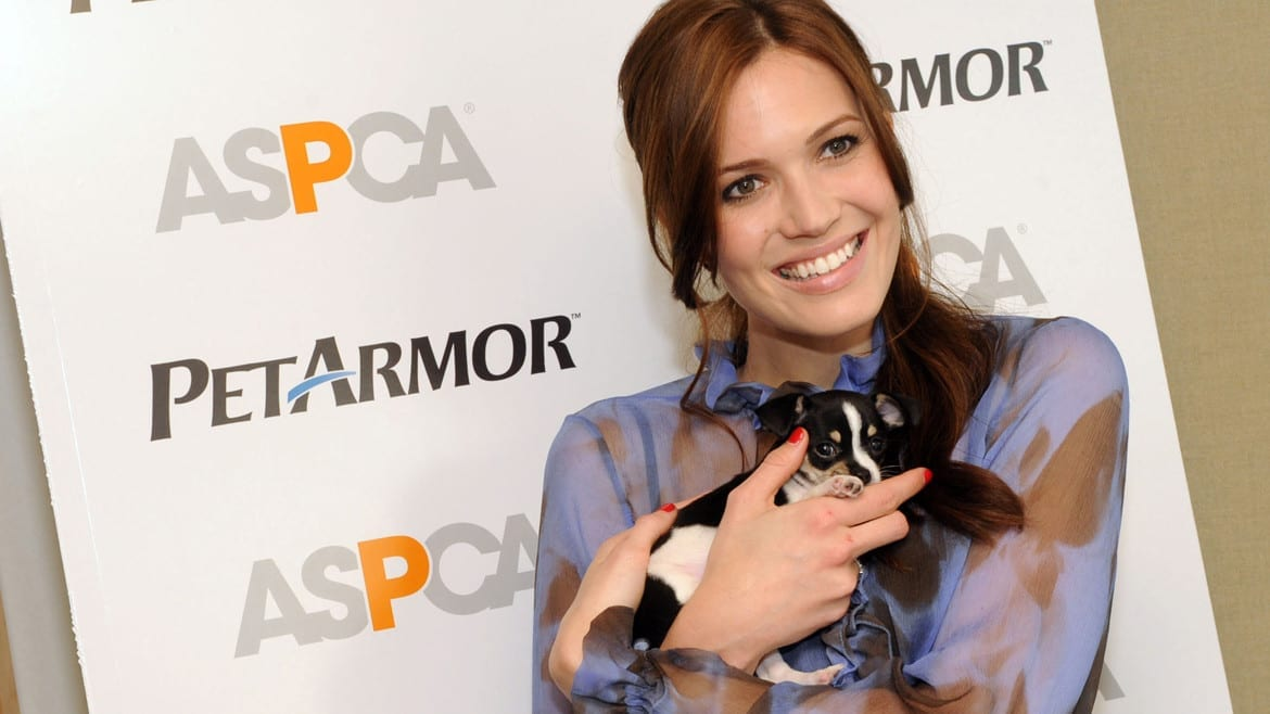 Mandy Moore really loves animals. Possibly more than she loves her soon-to-be ex-husband Ryan Adams. (Photo: Diane Bondareff | AP file)