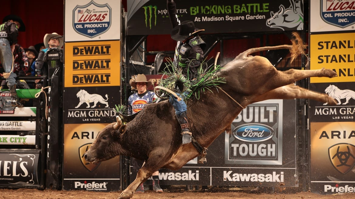 JB Mauney rides Cornwell Bucking Bulls's Blue Hurricane for 85 during the first round of the New York City Built Ford Tough series PBR. Photo by Andy Watson