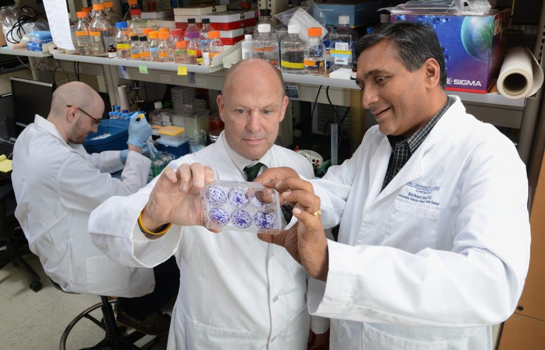 Scott Weir and Shrikant Anant view bladder cells