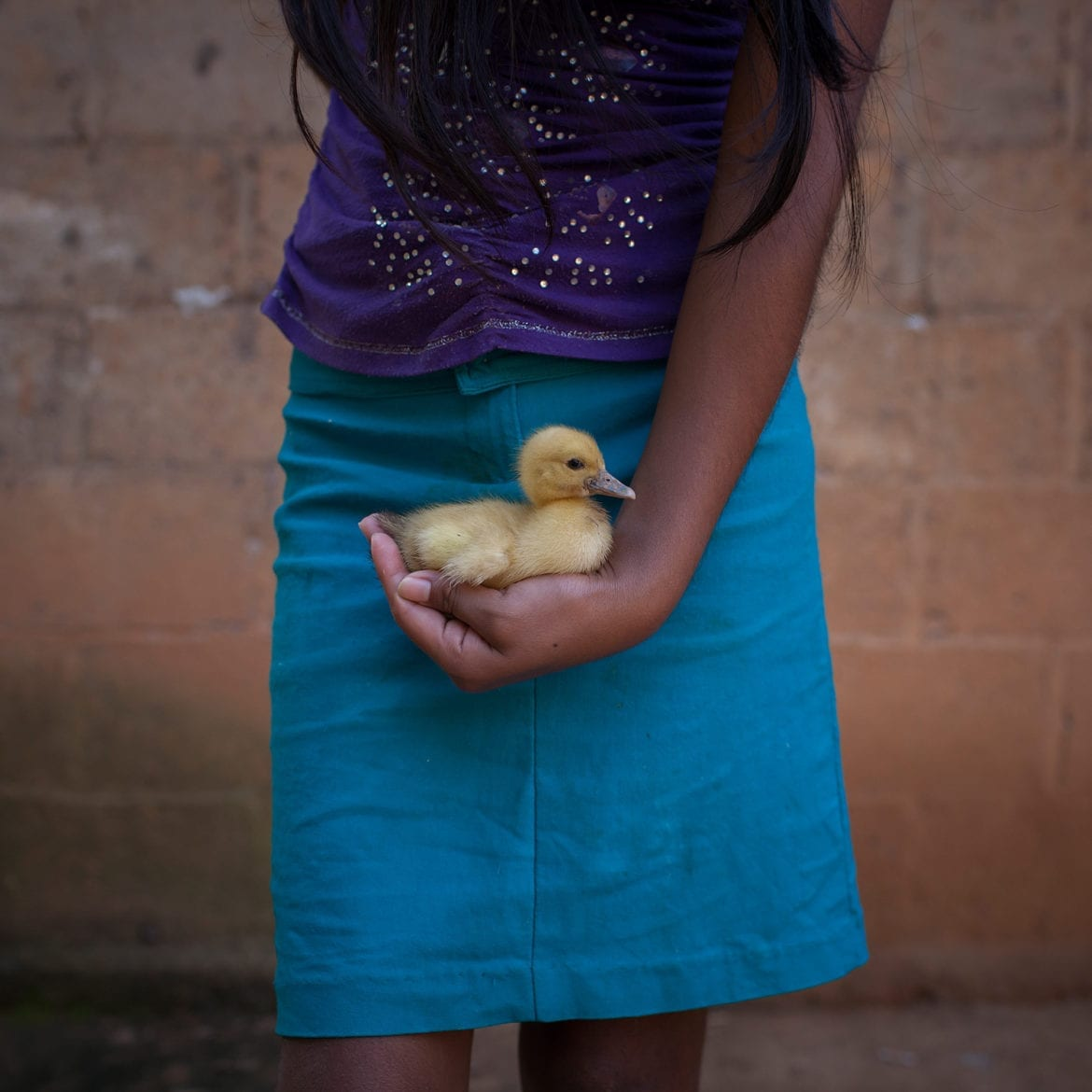 a girl holding a duck