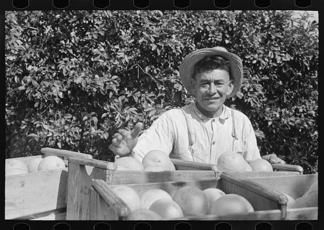 Mexican farmhand smiling with box of grapefruits