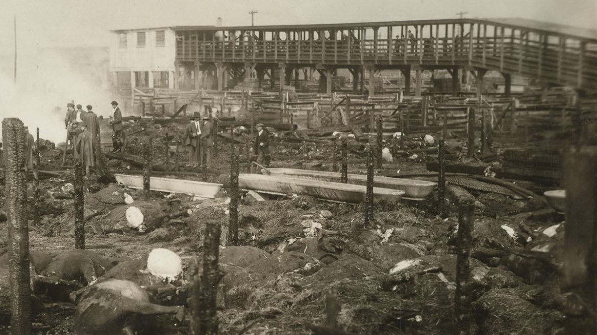 The aftermath of the West Bottoms stockyard fire of 1917.