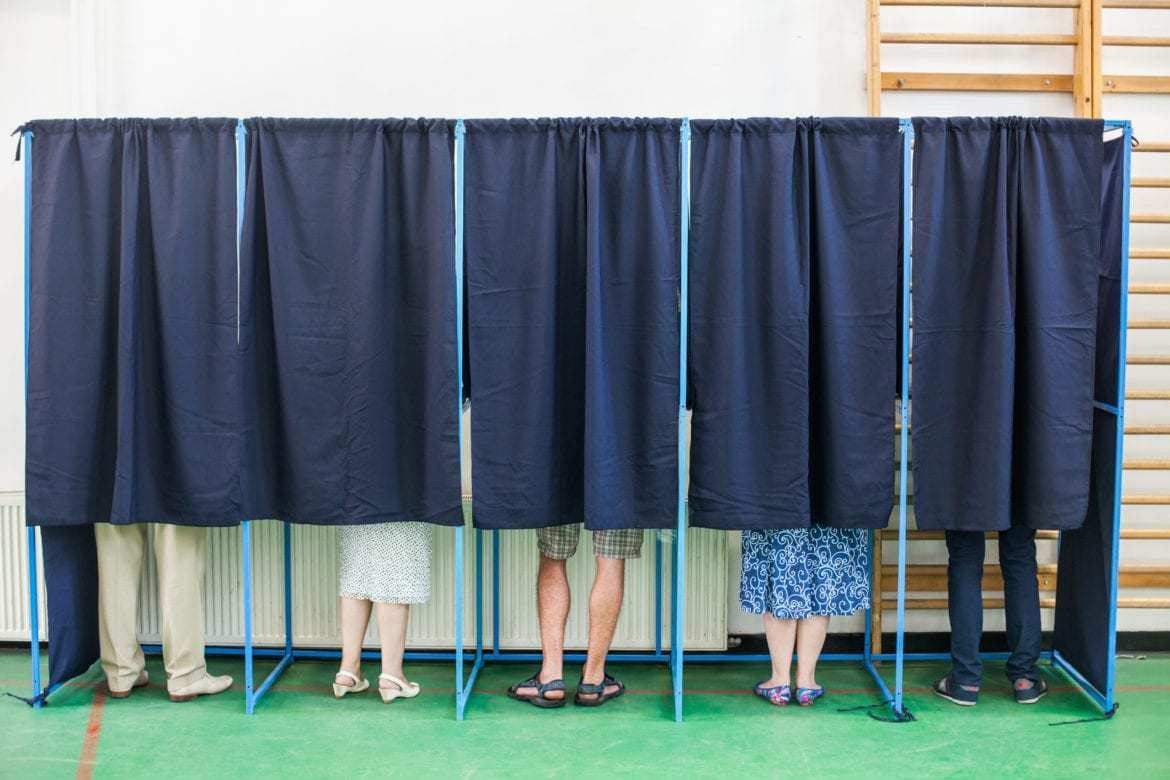 Photo of voters in voting booths.
