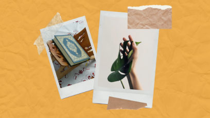 Polaroids of a Quran and a plant