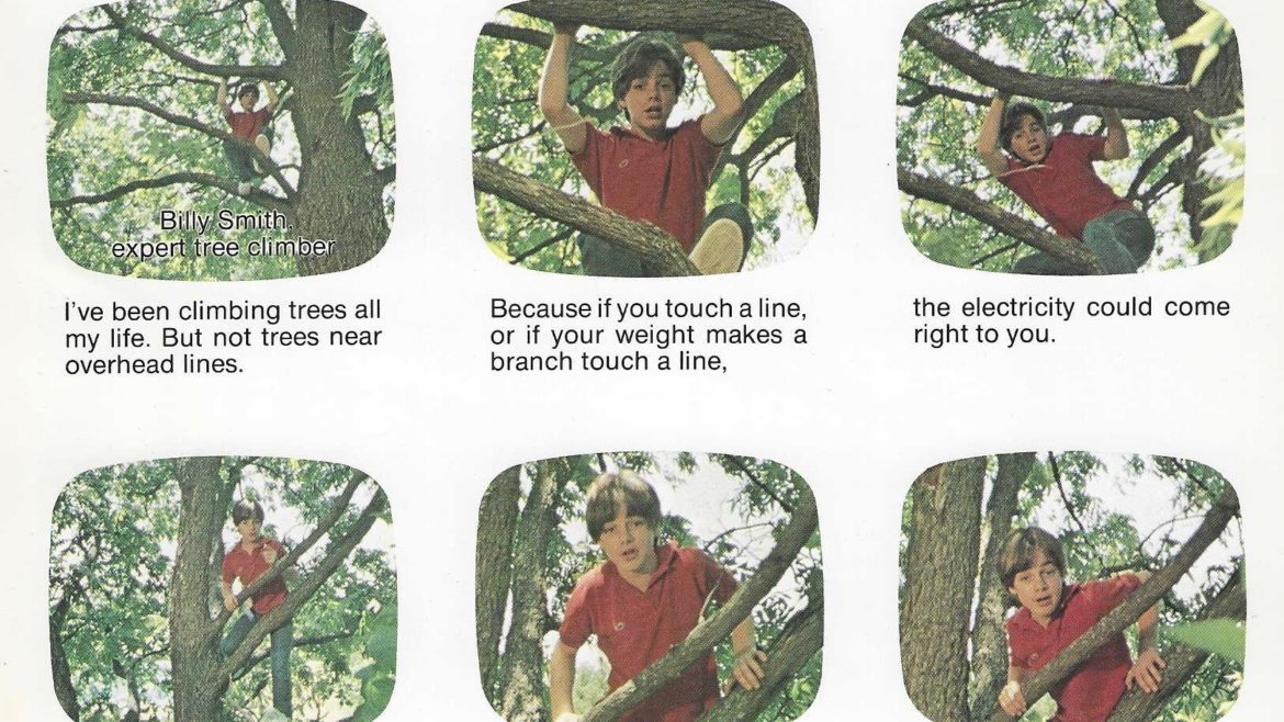 Six frames of the post-production storyboard for the Billy Smith Tree Climbing Expert PSA.