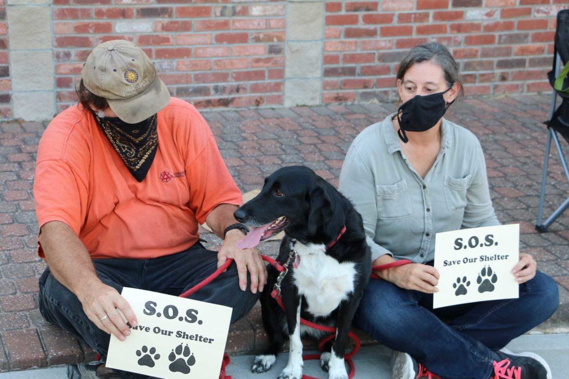 Two protesters and their dog