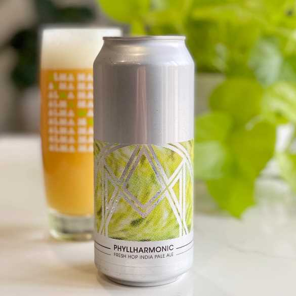 Alma Mader Brewing's new Phyllharmonic IPA. (Courtesy | Alma Mader Brewing)