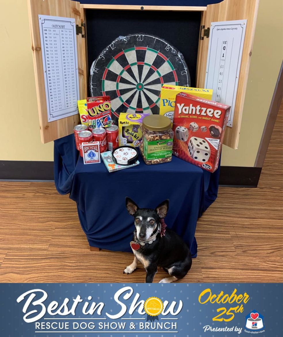 Best in Show raffle prizes