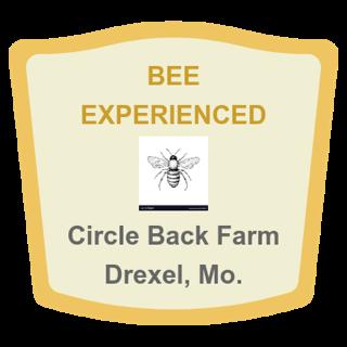 Bee Experienced lapel pin design