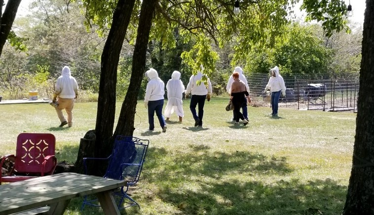 """A group of """"bee experience"""" agritourists"""