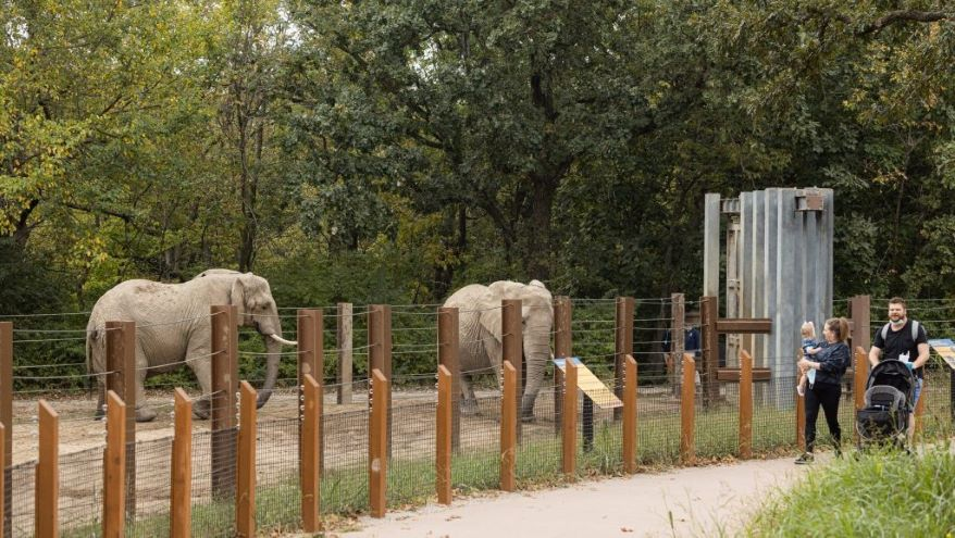 Visitors pass by the elephant exhibit at the Kansas City Zoo.